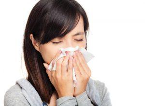 Phương pháptrị viêm xoang bằng cỏ hôi (cứt lợn - ngũ sắc): 1