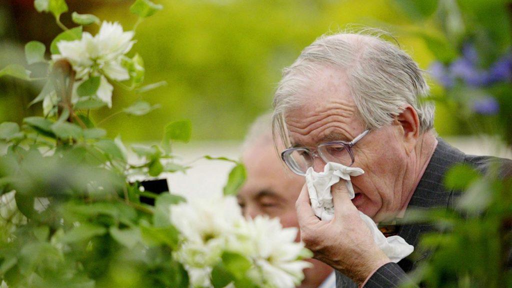 Thay đổi thời tiết và nỗi lo của người viêm xoang, viêm mũi dị ứng 1