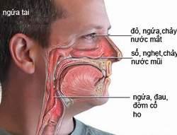 Quan sát dịch mũi chảy ra để đoán bệnh 1