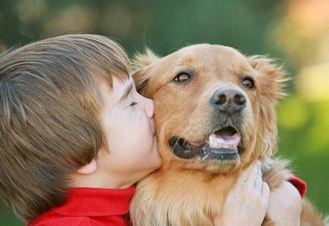 Nguyên nhân gây viêm mũi dị ứng ở trẻ em 1