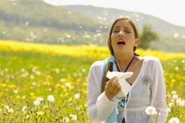 Nguyên nhân và cách trị viêm mũi dị ứng