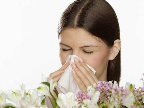Bệnh viêm mũi dị ứng và cách điều trị 1