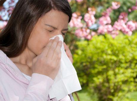 Tổng hợp bài thuốc chữa bệnh viêm mũi dị ứng 1