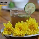 Cách làm trà hoa cúc Mật ong cho người Viêm xoang